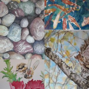 Art At The Library: Janet Lawrence