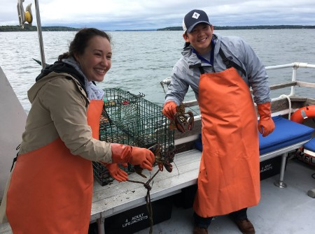 Seacoast Lobster Tours